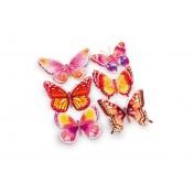 Autocollants déco Papillons