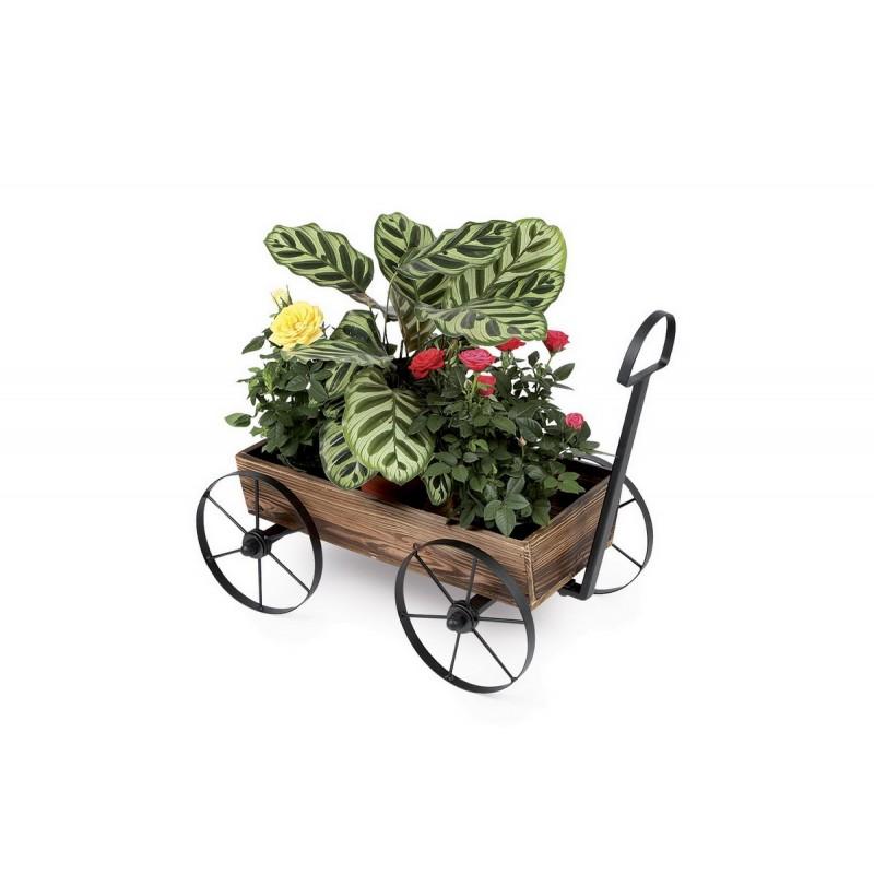 D coration pour plantes brouette - Brouette decorative en bois pour plantes exterieur ...